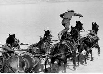 stagecoach essay Essay sample on the stagecoach topics specifically for you order now having recently bolted from prison, ringo kid, a rugged, well-known escaped outlaw was consequently heading for the same final destination as the passengers in the stagecoach.