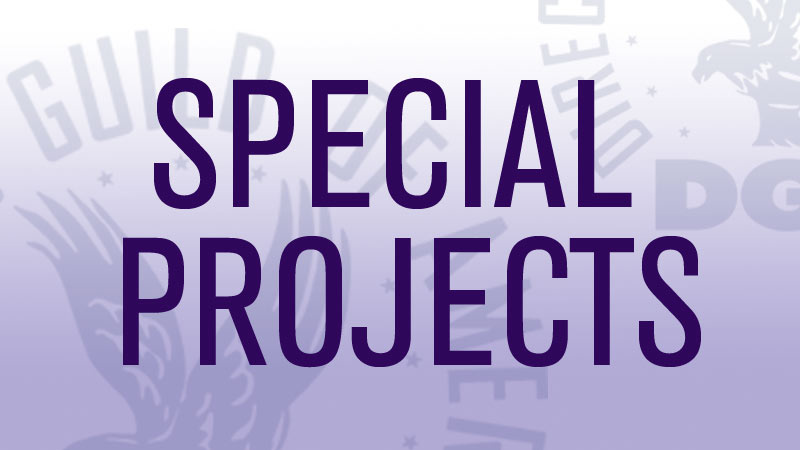DGA Special Projects Committee